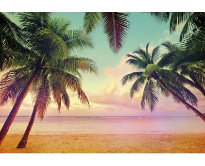 "8-967 Фотообои Komar ""Miami"""